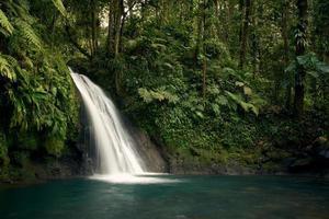 cachoeira no meio de árvores verdes