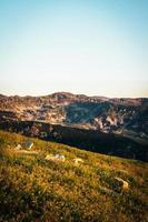 campo de grama perto de montanhas foto