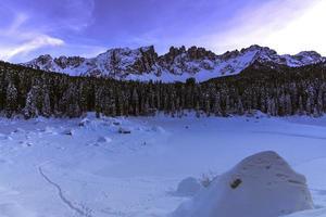 árvores e montanhas cobertas de neve foto