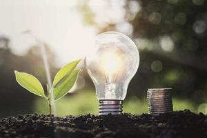 lâmpada de poupança de energia com uma folha verde de pilhas de moedas na sujeira foto