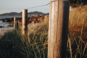 postes de cerca na grama foto