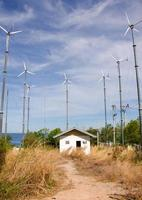 turbina eólica gerando eletricidade na colina