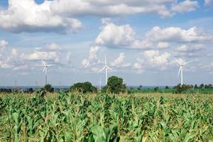 turbina eólica para energia alternativa no fundo do céu em mandioca foto
