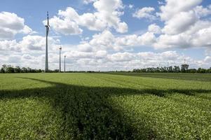 sombra do rotor no campo de energia eólica