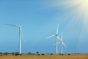três moinhos de vento - produção de energia limpa