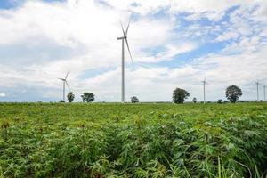 turbina eólica em plantação de mandioca