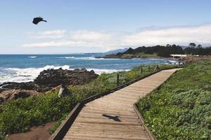 calçadão de madeira perto da praia foto