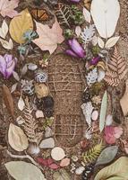 flores sortidas na areia