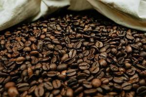muitos grãos de café foto