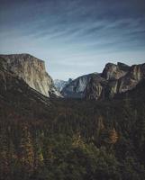 pinheiros com vista para o parque nacional de Yosemite