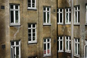 vizinhos foto