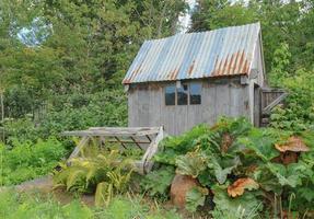 horta tradicional de frutas e vegetais em aldeia típica de Devon