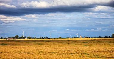 cenário rural com parque eólico