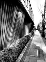 flutuações de fachada foto