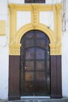 velha porta marroquina foto