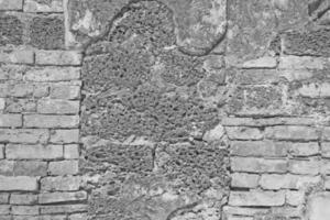 parede de tijolo branco e pedra laterita