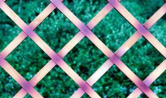 cerca de madeira foto