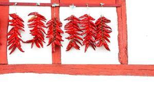 espelette peppers foto