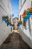 rua pitoresca de mijas com vasos de flores nas fachadas. andalus