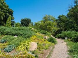 jardim ornamental foto