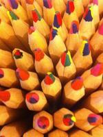 lápis de madeira foto
