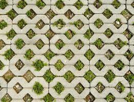 pavimentação de grama foto