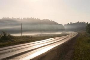 nevoeiro matinal foto