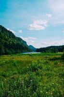campo de grama verde e montanha foto