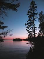 silhueta de árvores ao lado da água foto