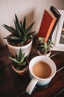 cactos em potes de cerâmica com caneca de café foto