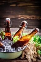 cerveja de cidra fresca e gelada foto