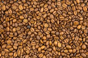 grãos de café torrados foto