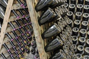 garrafas empoeiradas com espumante bruto em prateleira de madeira