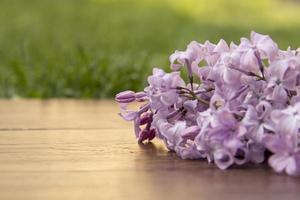 raminho de lilás repousa sobre uma superfície de madeira foto