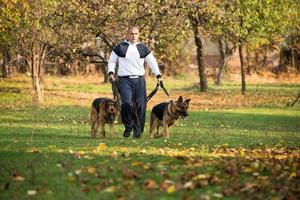 homem adulto caminhando ao ar livre com seus cães pastor alemão foto