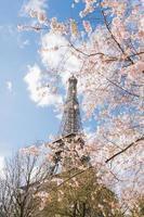 a torre Eiffel foto