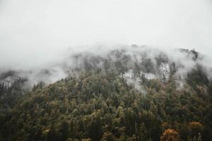 montanha com árvores sob céu nublado foto