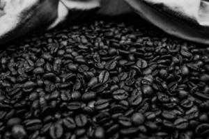 grãos de café preto e branco