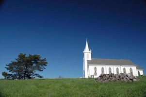 igreja branca e árvore na grama verde foto