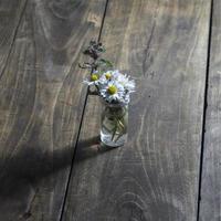 flor da margarida em frasco de vidro foto