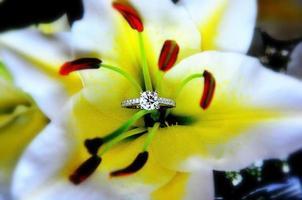 anel de diamante de noivado