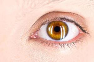 foco no olho foto