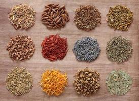 ervas medicinais e mágicas foto