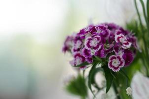 arranjo de casamento floral foto