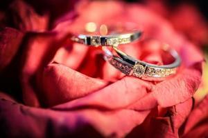 alianças de casamento em uma flor