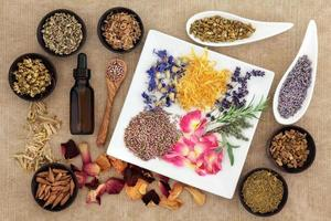 ervas mágicas e medicinais foto