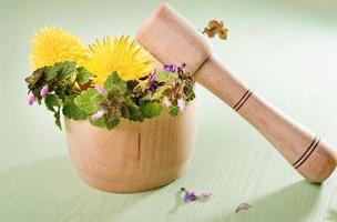 ervas frescas e dentes-de-leão em um pilão de madeira foto