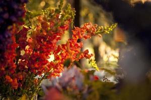 flores na recepção do casamento foto