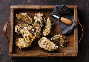 ostras com faca de ostras na caixa foto