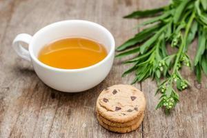 xícara de chá e alguns biscoitos frescos foto